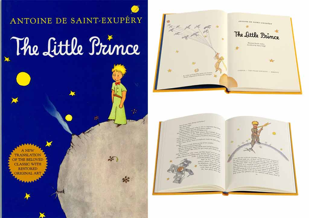 This book may look like its for kids but don't let its art fool you! The Little Prince is a book on philosophy.